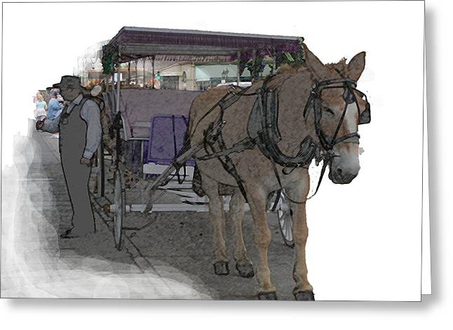 091614 Color Pencil Mule And Carriage Greeting Card