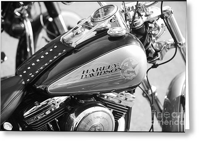 110th Anniversary Harley Davidson Greeting Card by Stefano Senise