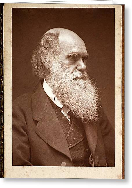 1874 Charles Darwin Photograph Portrait Greeting Card