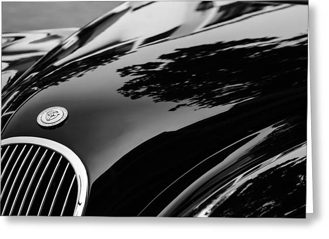 1954 Jaguar Xk 120 Roadster Hood Emblem Greeting Card by Jill Reger