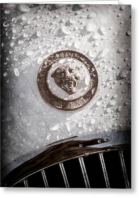 1954 Jaguar Xk120 Roadster Emblem Greeting Card by Jill Reger