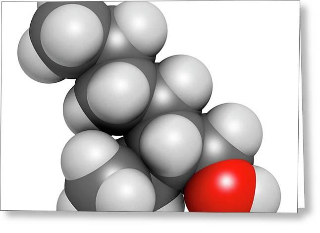 2-ethylhexanol Molecule Greeting Card by Molekuul