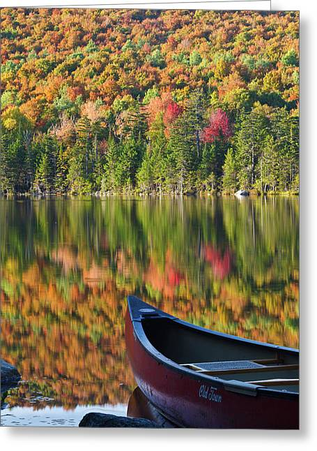 A Canoe On The Shoreline Of Pond Greeting Card