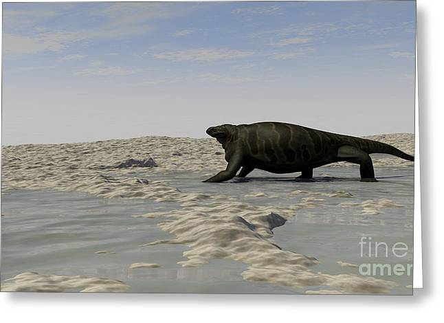 A Cotylorhynchus Along The Shores Greeting Card