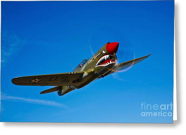 A Curtiss P-40e Warhawk In Flight Greeting Card by Scott Germain