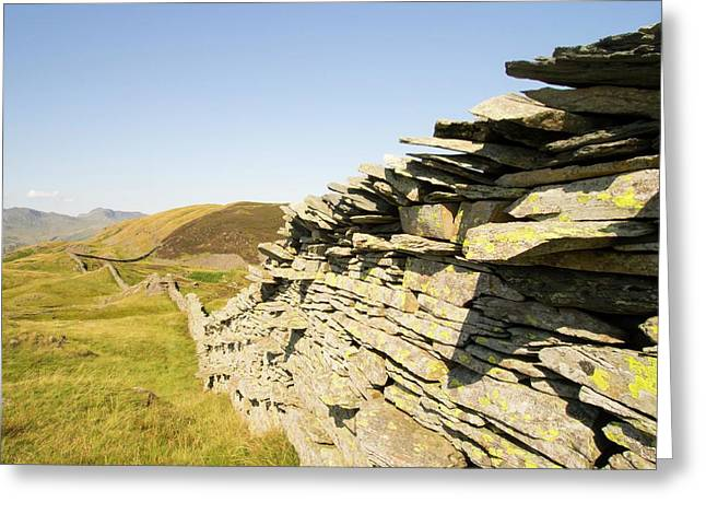 A Dry Stone Wall On Lingmoor Greeting Card by Ashley Cooper