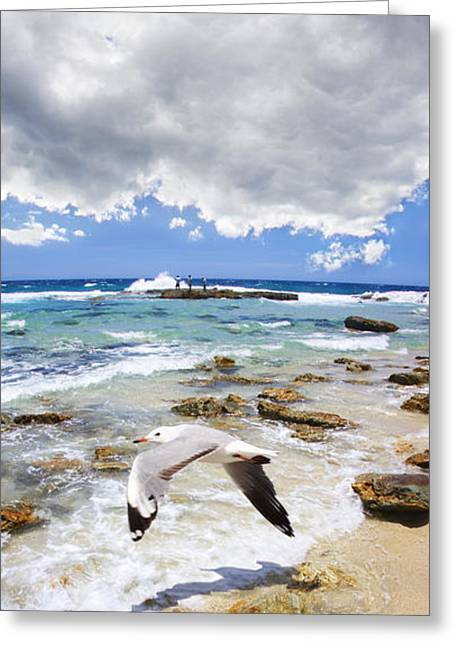A Flight Of Hope Greeting Card