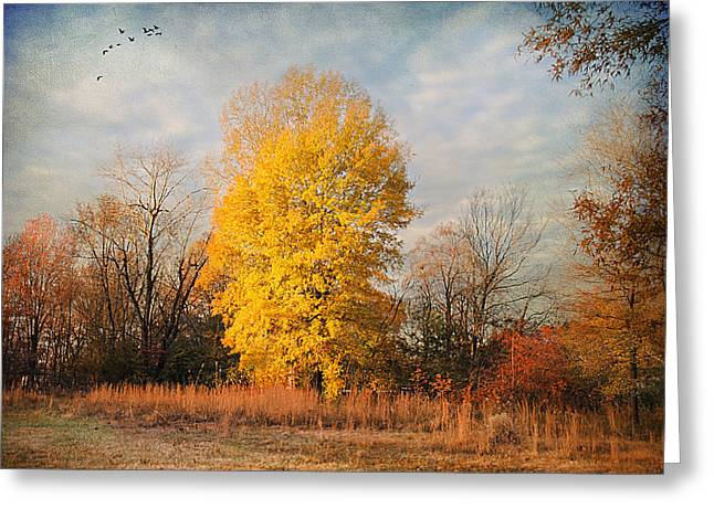 A Golden Moment Greeting Card by Jai Johnson