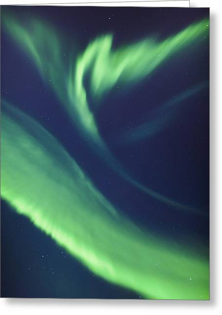 A Green Northern Lights Corona Greeting Card
