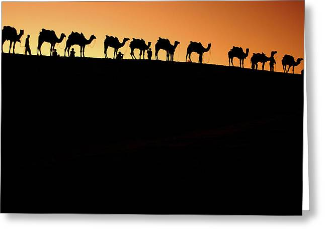 A Group Of Camel Herders Greeting Card by Piper Mackay