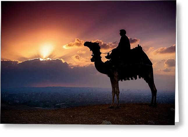 A Lone Camel And Rider Stand In Front Greeting Card by Matt Brandon