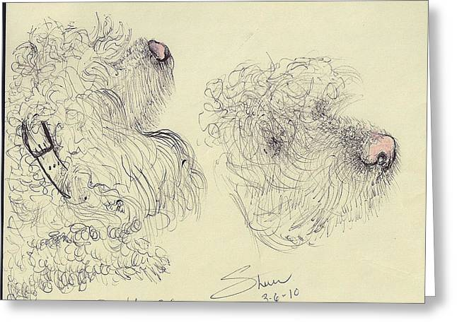 A Poodle Doodle  Greeting Card