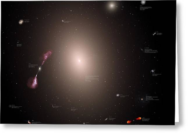 A Selection Of Galaxies Shown Greeting Card by Rhys Taylor