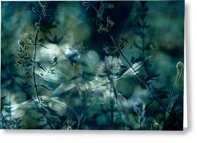 A Waking Dream Greeting Card by Bonnie Bruno
