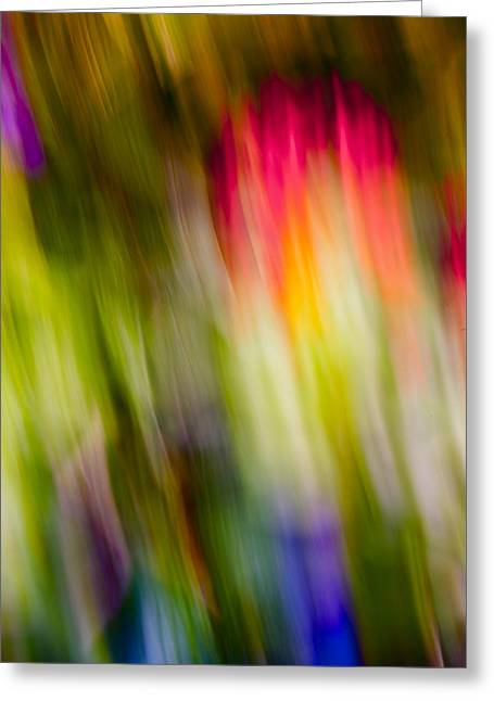 Abstraction Of Butterflies Greeting Card by Jon Glaser