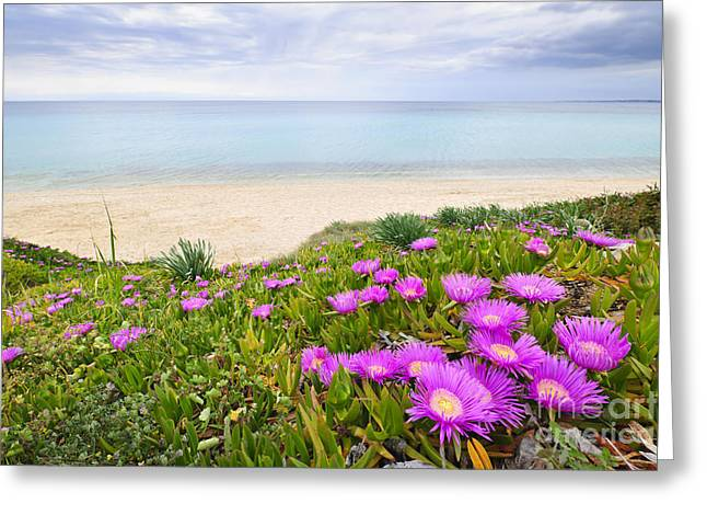 Aegean Sea Coast In Greece Greeting Card