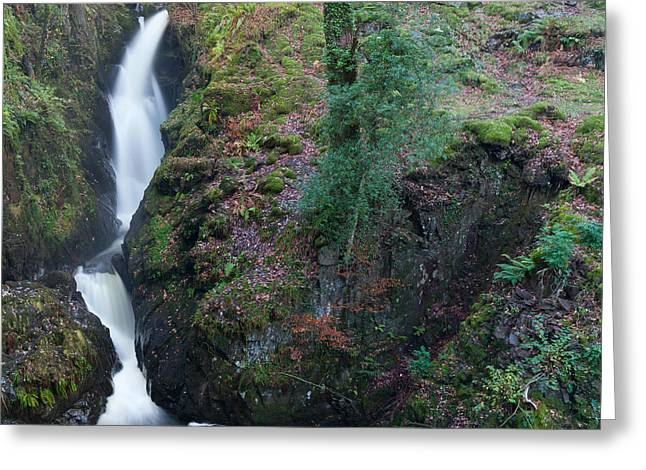 Aira Force Greeting Card by Nick Atkin
