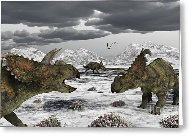 Albertaceratops During Their Winter Greeting Card