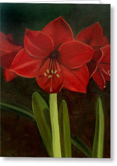 Amaryllis Greeting Card by Nancy Griswold