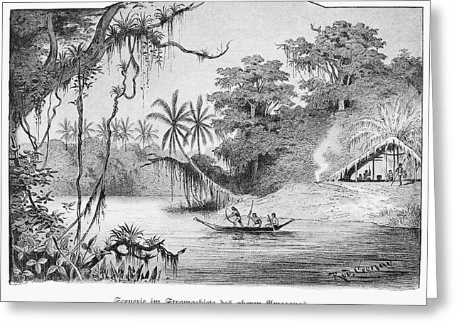 Amazon Jungle, 1892 Greeting Card by Granger