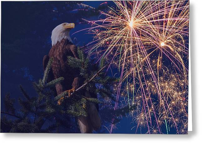 American Pride Greeting Card by Angie Vogel