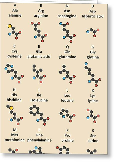 Amino Acids Molecules Greeting Card by Molekuul