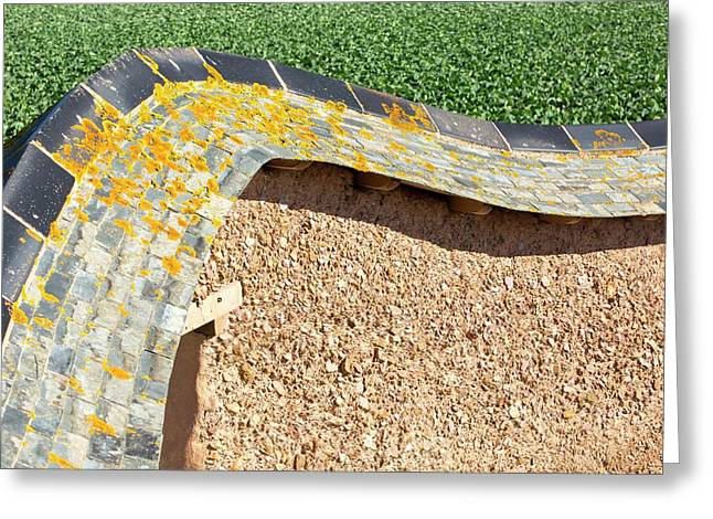 An Adobe Earth Wall Greeting Card by Ashley Cooper