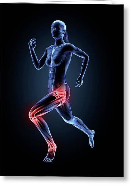Anatomy Of Runner Greeting Card by Andrzej Wojcicki