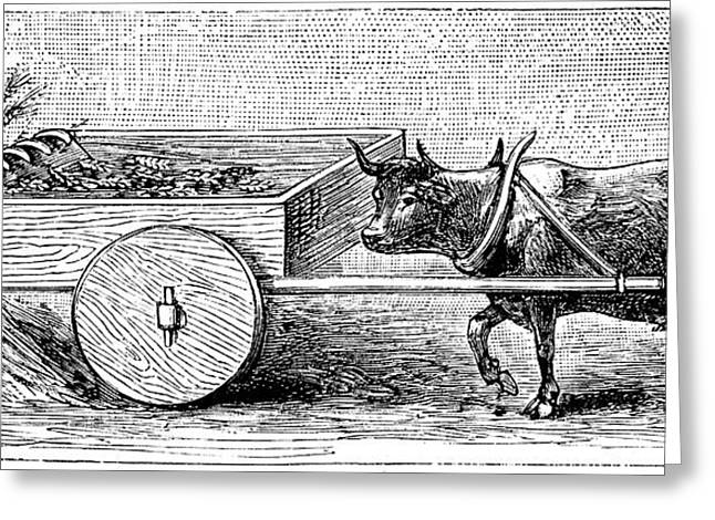 Ancient Roman Reaping Cart Greeting Card by Universal History Archive/uig