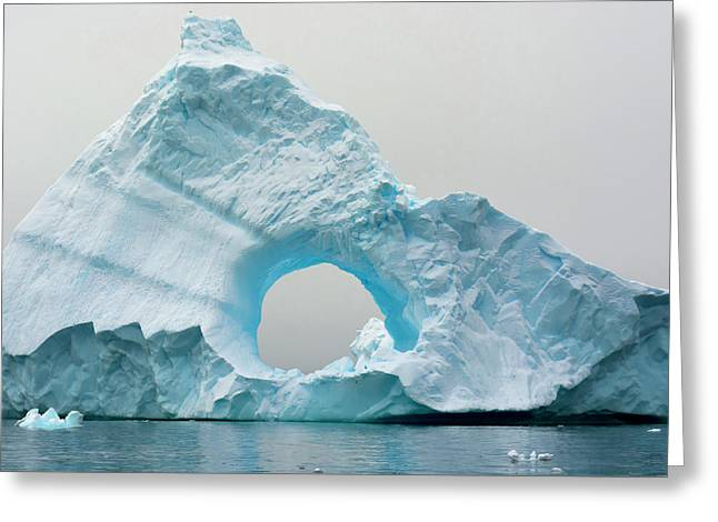 Antarctica Charlotte Bay Giant Iceberg Greeting Card by Inger Hogstrom