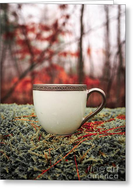Antique Teacup In The Woods Greeting Card by Edward Fielding