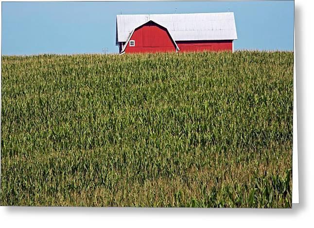 Arable Farm Greeting Card