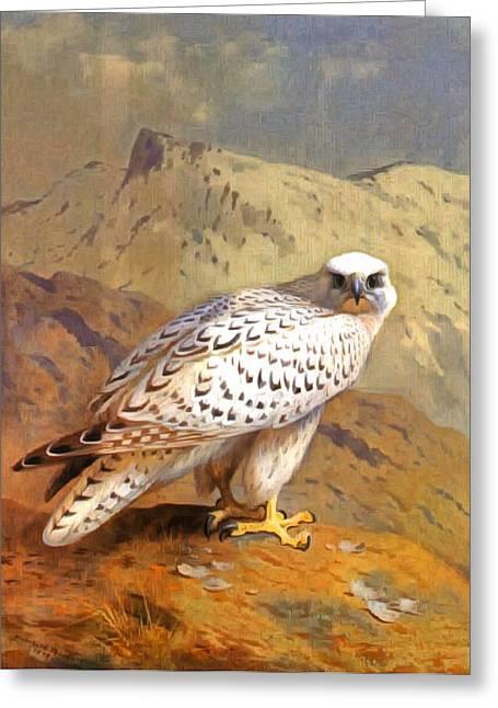 Greenland Falcon Greeting Card by Archibald Thorburn