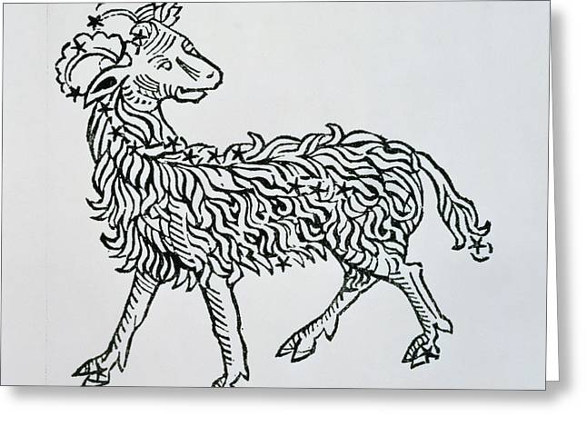 Aries An Illustration From The Poeticon Greeting Card by Italian School