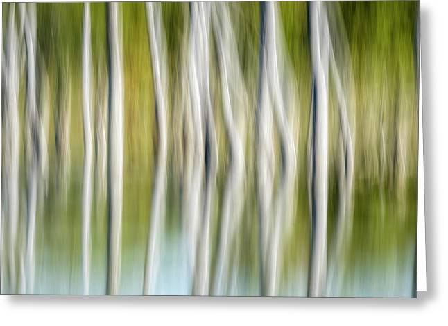 Artistic Abstract Of Trees Greeting Card