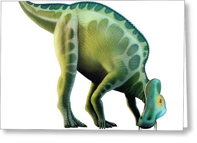 Artwork Of A Corythosaurus Dinosaur Greeting Card