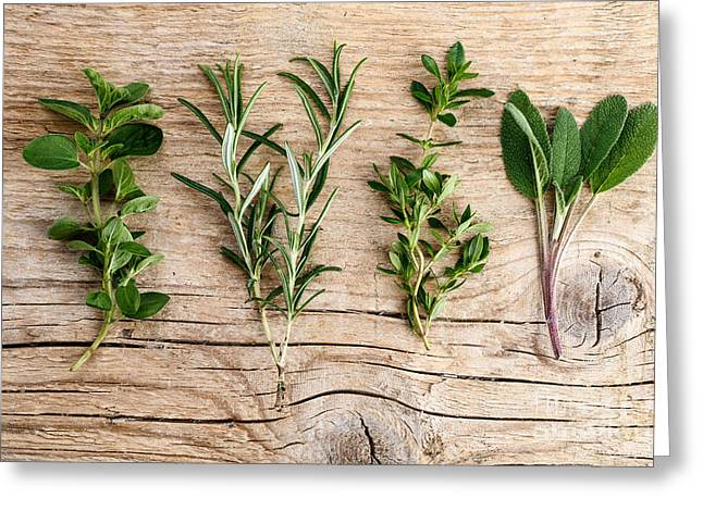 Assorted Fresh Herbs Greeting Card by Nailia Schwarz