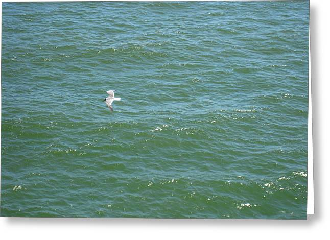 Atlantic City - 01139 Greeting Card by DC Photographer