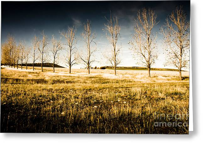 Atmospheric Vibrant And Dark Farming Landscape Greeting Card by Jorgo Photography - Wall Art Gallery
