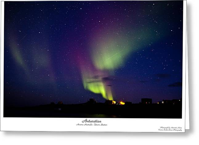 Aurora Australis Greeting Card by David Barringhaus