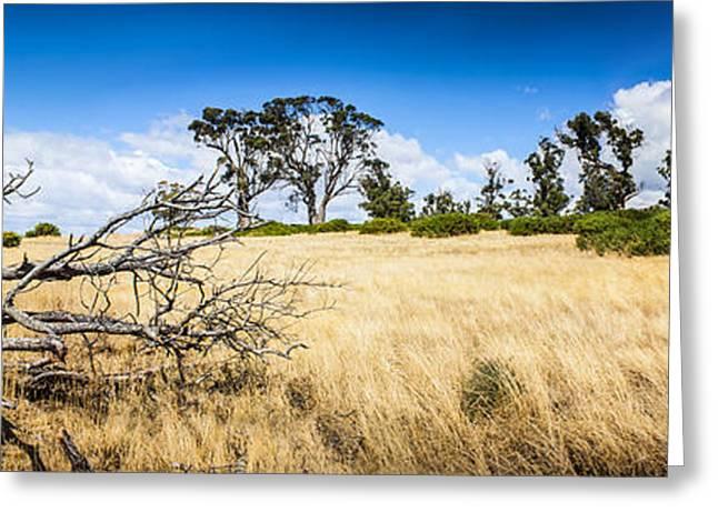 Australia Summer Landscape Of Rural Tasmania Greeting Card