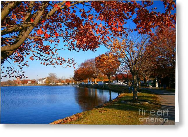 Autumn At Argyle Park Greeting Card