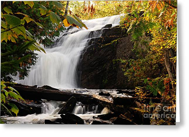 Autumn At Cattyman Falls Greeting Card by Larry Ricker