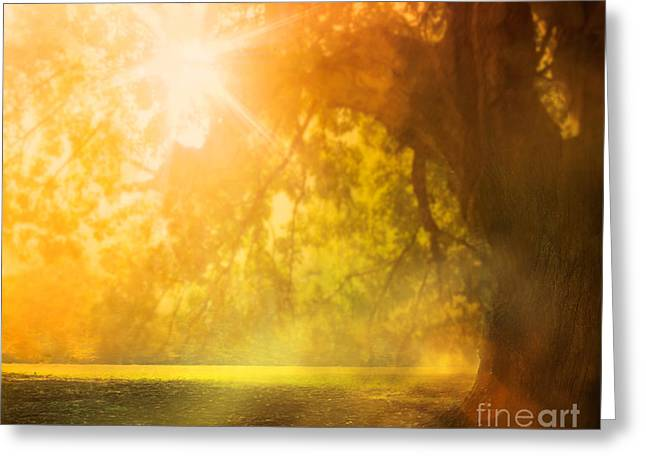 Autumn Background Greeting Card