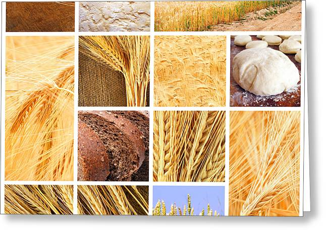 Autumn Harvest Collage Greeting Card by Boon Mee