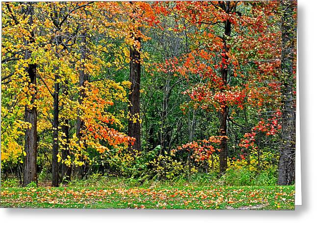 Autumn Landscape Greeting Card by Frozen in Time Fine Art Photography