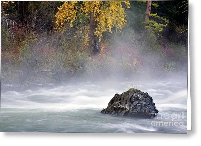 Autumn Mist Greeting Card by Mike  Dawson