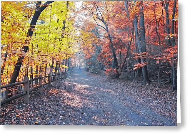 Autumn On Forbidden Drive Greeting Card by Bill Cannon