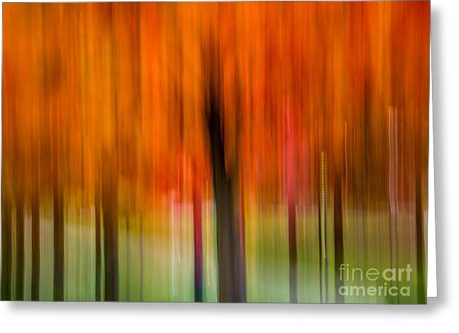 Autumn Park 2 Greeting Card by Susan Cole Kelly Impressions