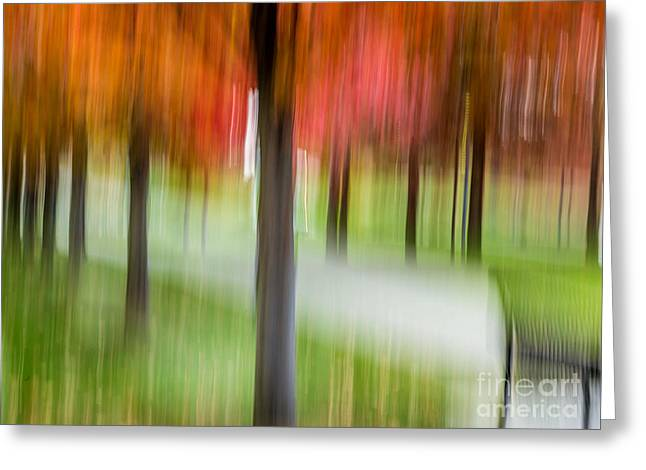 Autumn Park 3 Greeting Card by Susan Cole Kelly Impressions